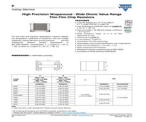P0805K1010BB.pdf